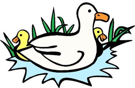 Black duck book report
